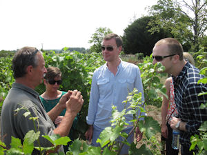 one day wine tours with the winemaker