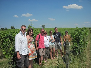 Half day wine tour in Saumur Vineyard