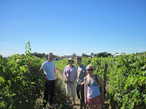 IMG_3758 In the vineyards with Loire Wine Tours