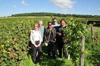 in a saumur champigny vineyard